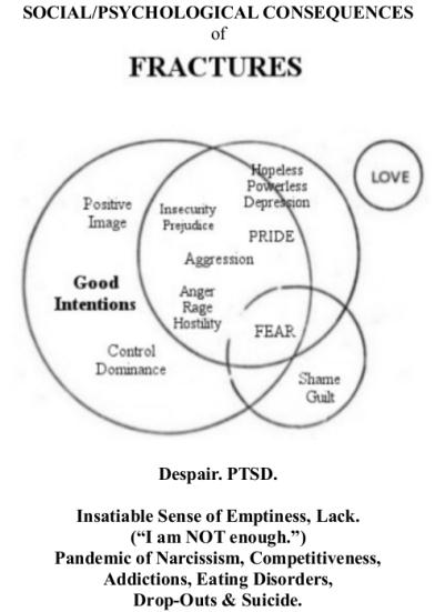 14. Fractures & Epidemics