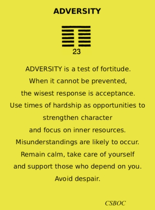23 Adversity